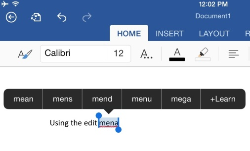 Using the Edit Menu in Word for iPad