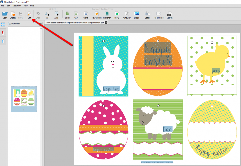 Editing PDF Easter Tags