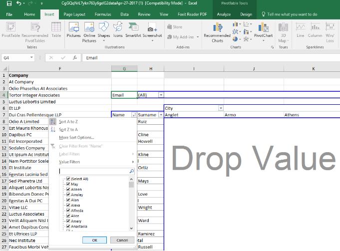 Customizing Pivot Table Data