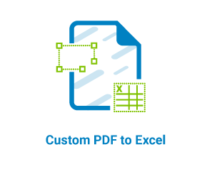 Custom PDF to Excel